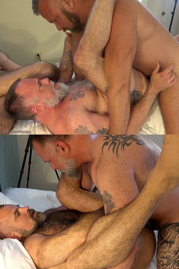 Musclebearporn - masculine fuzzy daddy Thor barebacks and creampies tattooed muscle bear Liam before Liam creampies Tigerpouncer in Husband Swap Part 2 01