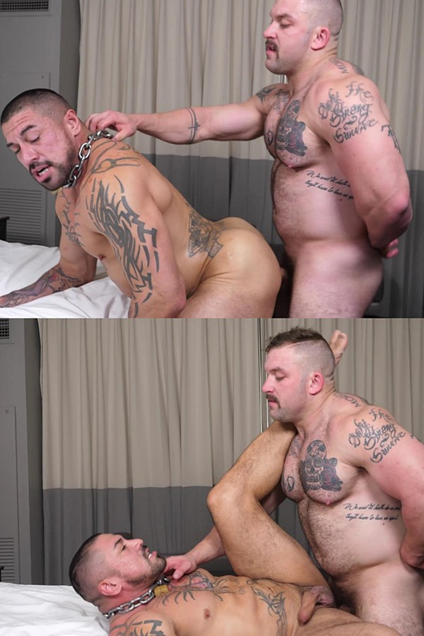 Theguysite - fuzzy beefcake Jack fucks inked, masculine hunk Rocky Maximo (aka LAMusclePair) in doggy and missionary style before he nuts on Rocky's face 01