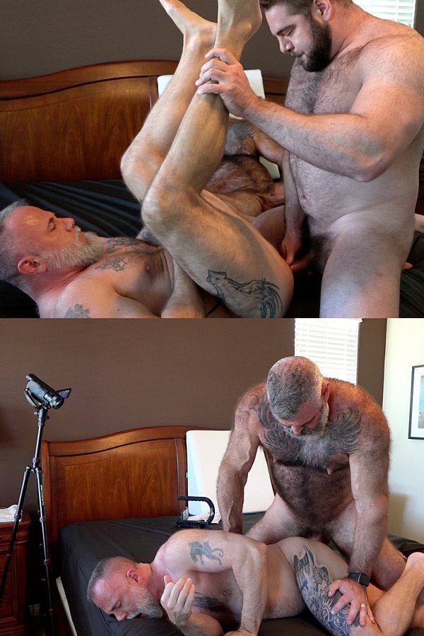 Musclebearporn - Fuzzy muscle bears Teddy Hunter and Will Angell take turns barebacking Liam Angell before they creampie and fuck the cum out of Liam in Roid Load 01