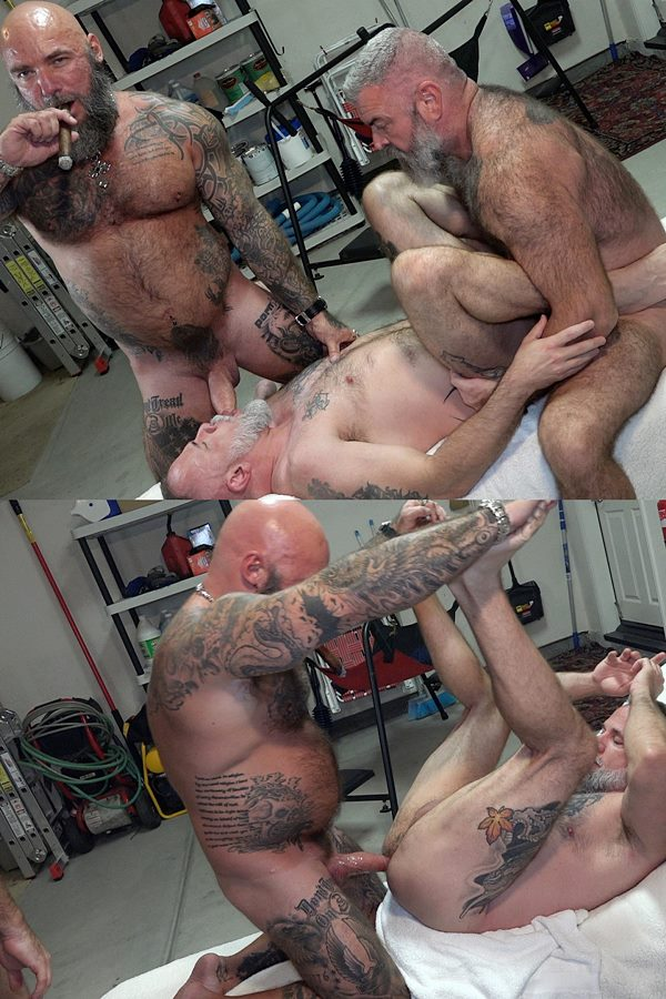 Musclebearporn - masculine inked hairy daddy Jason Collins and Will Angell bareback bear bottom Liam Angell before Jason creampies Liam in Dad's Biker Buddy 01